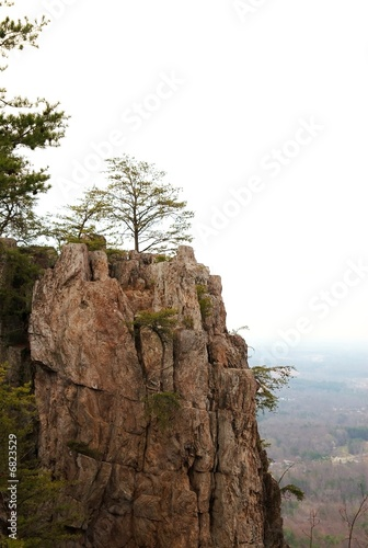 Cliff side mountain with trees