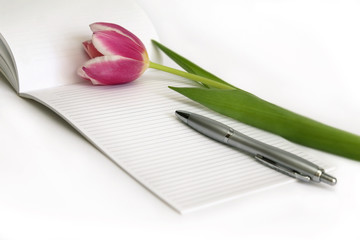 Bouquet of pink tulips, note and silver pen