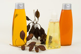 Shampoo, Conditioner And Hand Soap With Seeds In Pods poster