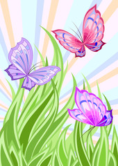 Bright butterflyes fluttering above green grass