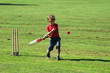 boy playing cricket - 6916319
