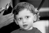 Boy getting haircut poster