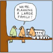 Planning a Large family