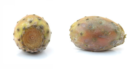 Opuntia cactus fruit prickly pear