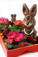 Food,three chocolate easter bunnies and flowers