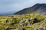 Iceland - Rocky Lava Landscape  poster