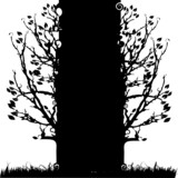 Tree silhouette old, season, white and black background poster