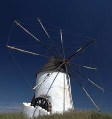 Windmill with Water Wheel