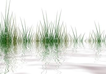 Grass elements