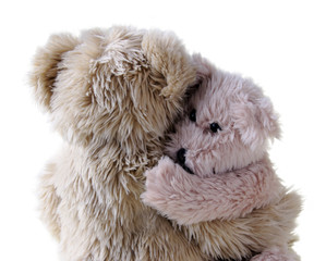 a large teddy bear hugs a smaller one, isolated on white