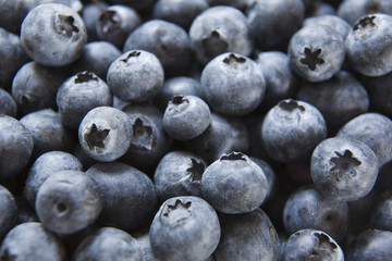 Full frame image of blueberries