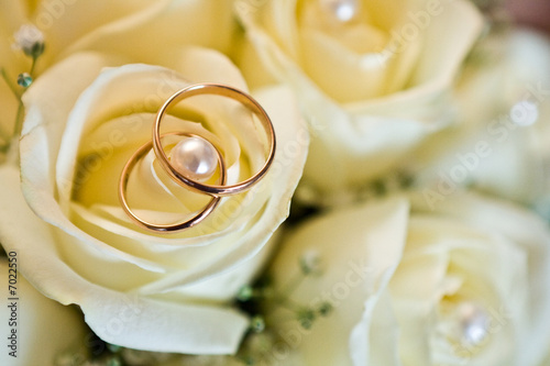canvas print picture Wedding rings (close-up)