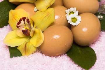 easter eggs with yellow orchid