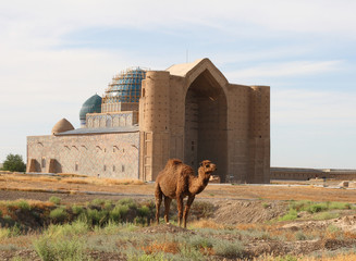 Camel before a historical construction