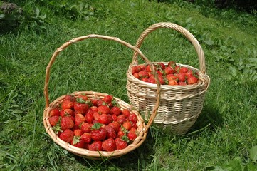 Baskets with a strawberry