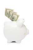 piggy bank and dollars poster