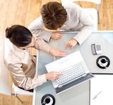 Businesswomen using laptop computer poster