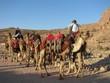 Chameaux, Petra