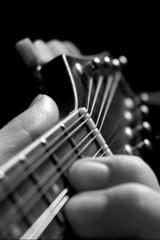 mandolin 2