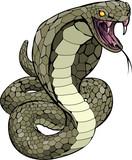 Cobra snake about to strike illustration poster