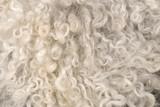 Sheepskin - 7109335