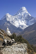 Mt. Ama Dablam and trekkers