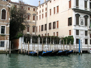 Palais blanc et gondoles noires, Venise, Italie.