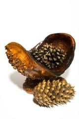 vase with cones