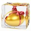 Golden Egg frozen in ice