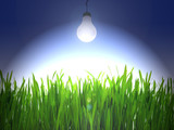 Electric bulb shine over a green grass poster
