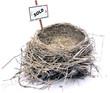 bird nest - real estate '08
