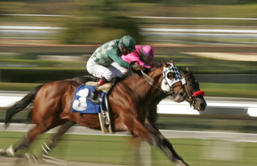 Abstract Motion Blur of Horse Race
