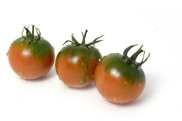 tomates fraîcheur