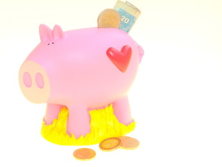cochon économe