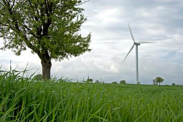 ENERGIA PULITA, NATURA IN ARMONIA CON SCIENZA E TECNOLOGIA