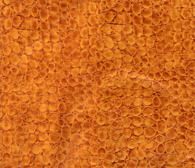 snake leather texture to background