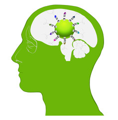 rede cérebro