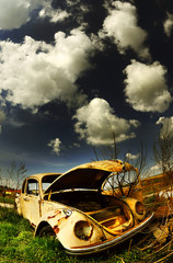 wrecked beetle © Dan65