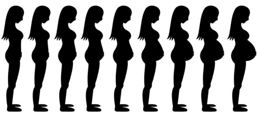 Pregnant Woman Long Hair Stages