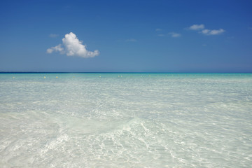 Mar y Agua