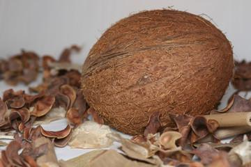 cocoanut