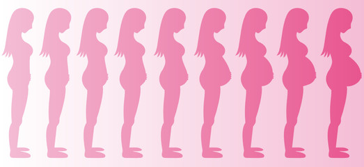Stages of Pregnancy Girl