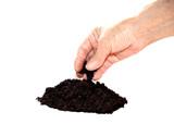Soil black in hand poster