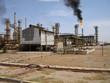 oil plant 2