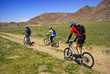 Mountain bikers on old rural road in spring steppe