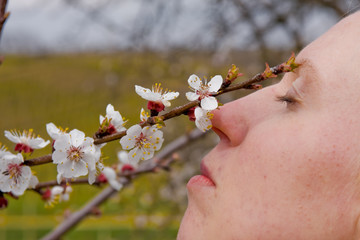 young female smelling cherry tree in blossom in the springtime