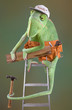 Chameleon Carpenter