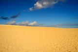 The silence of desert poster