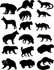 Collection of forest animals. Bear, wolf, foxes, and many others