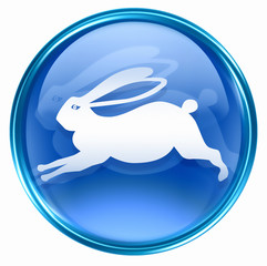 Rabbit Zodiac icon blue, isolated on white background.